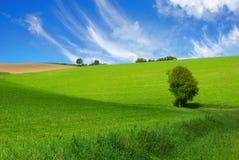 счастливый ландшафт немногая Стоковое Изображение RF