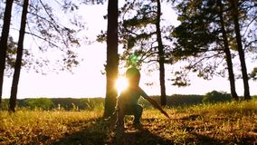 Счастливый мальчик дурит в парке или лесе на заходе солнца Детские игры с листьями, бросая их вверх силуэт сток-видео