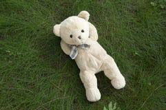 Счастливый плюшевый медвежонок лежа в траве Стоковое Фото