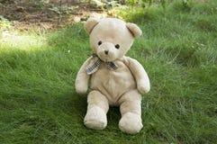 Счастливый плюшевый медвежонок сидя в траве Стоковые Изображения