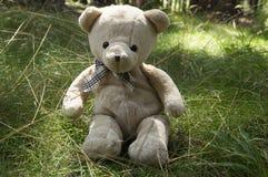 Счастливый плюшевый медвежонок сидя в траве Стоковое Фото