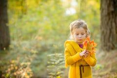 Счастливый ребенок играя с желтыми кленовыми листами и мечтами outdoors в парке осени под лучами солнца Счастье, падение и стоковые фотографии rf