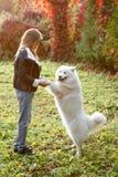Счастливый ребенок играя с собакой в зеленом поле стоковые изображения rf