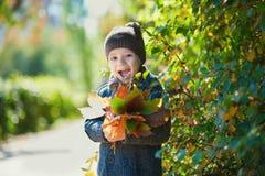 Счастливый ребенок, мальчик, играющ в парке, бросая листья, играя с упаденными листьями в осени стоковое фото