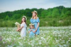Счастливый ребенок матери и дочери вместе с желтыми цветками одуванчика в летнем дне наслаждается свободным временем каникул совм стоковые изображения rf