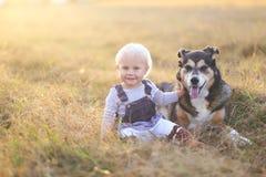 Счастливый ребёнок сидя в поле с принятым pe немецкой овчарки стоковая фотография