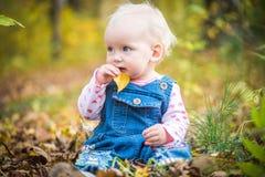 Счастливый ребёнок смеясь над и играя в осени на лесе Стоковые Фото