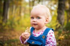 Счастливый ребёнок смеясь над и играя в осени на лесе Стоковое Фото