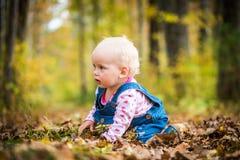 Счастливый ребёнок смеясь над и играя в осени на лесе Стоковые Изображения