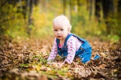 Счастливый ребёнок смеясь над и играя в осени на лесе Стоковая Фотография