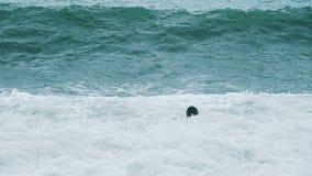 Счастливый смешной человек искупан в шторме на море на волнах, замедленном движении сток-видео