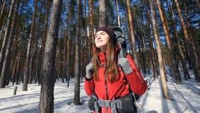 Счастливый туристский hiker при рюкзак дышая свежим воздухом Успех, воодушевленность, выигрывая, концепция мотивировки HD акции видеоматериалы