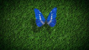 Счастливый цветок бабочки 4K дня земли