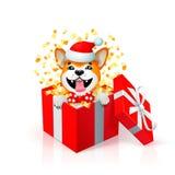 Счастливый щенок шаржа в подарочной коробке нося шляпу santas Портрет собаки inu Акиты японской как символ 2018 Новых Годов Новый Стоковое Изображение