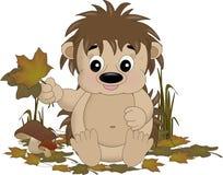 счастливый hedgehog Стоковые Фотографии RF