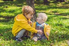 2 счастливых брать в желтых фуфайках в осени паркуют Стоковое фото RF