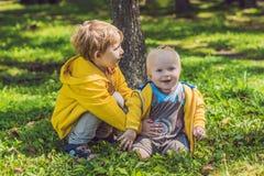 2 счастливых брать в желтых фуфайках в осени паркуют Стоковое Изображение