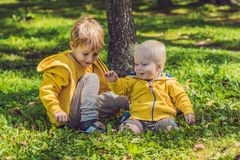 2 счастливых брать в желтых фуфайках в осени паркуют Стоковые Изображения