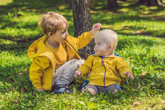 2 счастливых брать в желтых фуфайках в осени паркуют Стоковое Фото