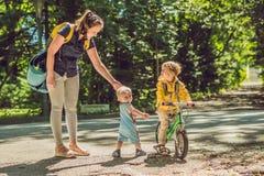 2 счастливых брать в желтых фуфайках в осени паркуют Стоковые Изображения RF
