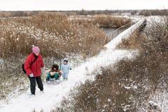 2 счастливых дет в одеждах моды зимы едут сани с свиньей игрушки и медведем на мосте через реку Первый снег, fam Стоковое Изображение
