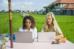 2 счастливых женских друз работая outdoors на красивом интернет-кафе с женщиной портативного компьютера кавказской и афро смешанн Стоковые Фотографии RF