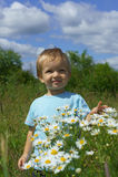 Счастье в цветках Стоковое фото RF