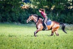 Счастливая верховая лошадь молодой женщины на солнечном летнем дне стоковые фото