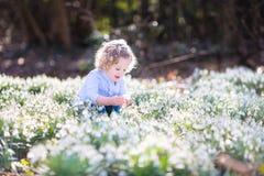 Счастливая девушка малыша играя с первой весной цветет Стоковая Фотография