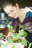 Счастливая девушка позаботится о завод в баке Стоковая Фотография