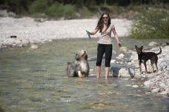 Счастливая женщина играя с ее собаками в воде Стоковое Изображение