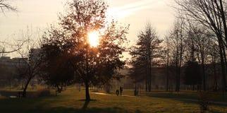 Счастливая и спокойная жизнь в природном парке, сельская местность на заходе солнца Стоковые Изображения RF