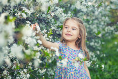 Счастливая маленькая девочка в саде вишневого цвета Стоковое Изображение RF