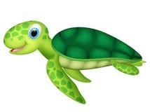 Счастливая морская черепаха младенца Стоковые Фотографии RF