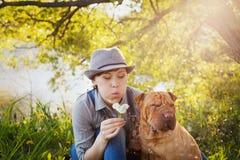 Счастливая молодая женщина в шляпе с собакой Shar Pei сидя в поле в свете захода солнца и дуя на одуванчике цветет Стоковая Фотография