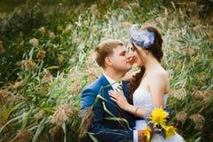 Счастливая невеста, groom стоя в зеленом парке, целующ, усмехающся, смеясь над любовники в дне свадьбы Стоковая Фотография