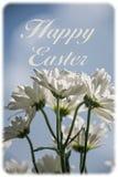 Счастливая поздравительная открытка пасхи Стоковая Фотография RF