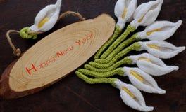 Счастливая предпосылка Нового Года, цветок лилии arum Стоковые Фото