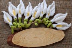 Счастливая предпосылка Нового Года, цветок лилии arum Стоковое фото RF
