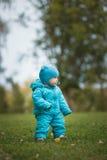 Счастливая семья идя в парк осени: мальчик бежать на луге Стоковое Фото