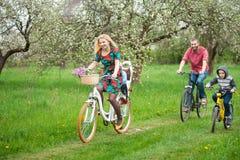 Счастливая семья на саде велосипедов весной Стоковое Изображение