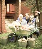 Счастливая семья с хлебоуборкой овощей Стоковая Фотография RF