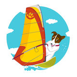 Счастливая собака занимаясь серфингом Стоковые Изображения