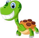 Счастливая черепаха шаржа, изолированная на белизне Стоковая Фотография