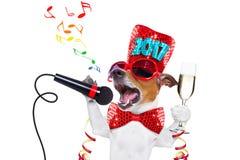 Счастливое celberation собаки Нового Года Стоковые Изображения