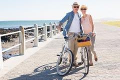 Счастливые вскользь пары идя для велосипеда едут на пристани Стоковое Изображение