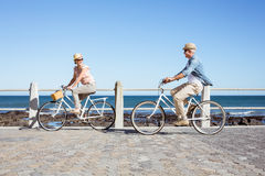Счастливые вскользь пары идя для велосипеда едут на пристани Стоковая Фотография RF