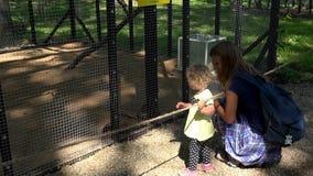Счастливые женщина семьи и девушка ребенка около клетки фретки животной в зоопарке сток-видео