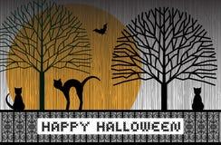 Счастливые коты хеллоуина Стоковое Изображение
