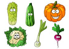 Счастливые красочные свежие овощи шаржа Стоковая Фотография